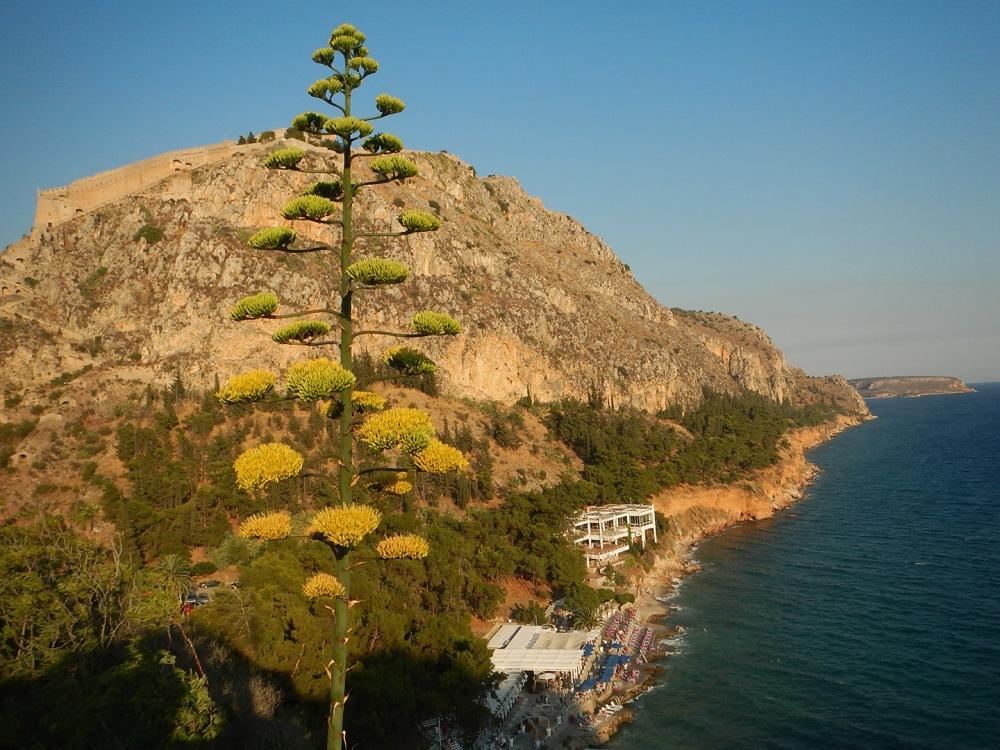 focus-aventure-grece-nauplie-plage-vue