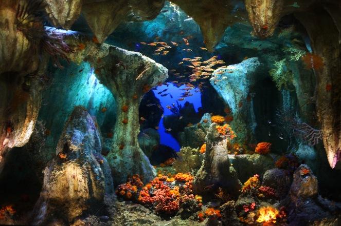 Les sublimes tableaux vivant de l'aquarium d'Ikebukuro