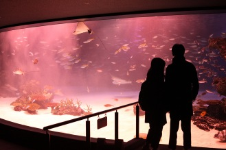 Les aquariums géants au Sunshine City d'Ikebukuro