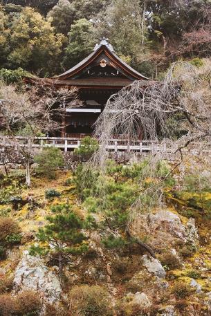 Temples cachés sous la verdure à Chion-In, Kyoto
