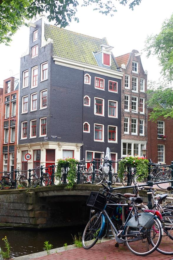 focus-aventure-amsterdam-paysage-rue-velo