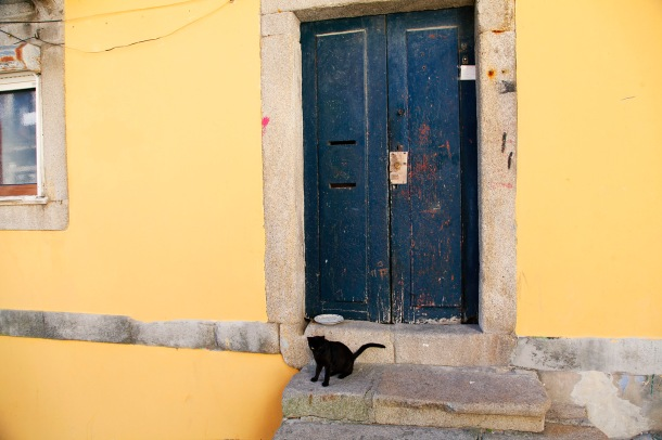focus-aventure-julia-laffaille-porto-portugal-chat