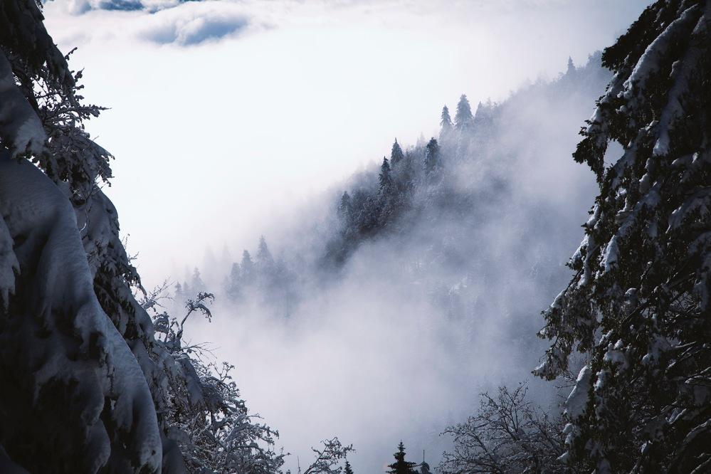 focus-aventure-chartreuse-montagne-la-pinea-paysage