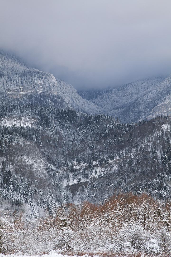 focus-aventure-chartreuse-montagne-paysage-saint-laurent-du-pont