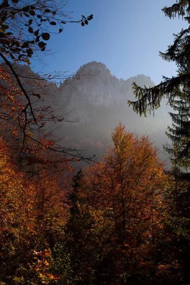 focus-aventure-chartreuse-montagne-prairie-fetrus-randonnee