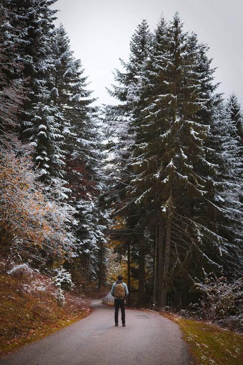 focus-aventure-chartreuse-montagne-saint-pierre-de-chartreuse-les-essarts