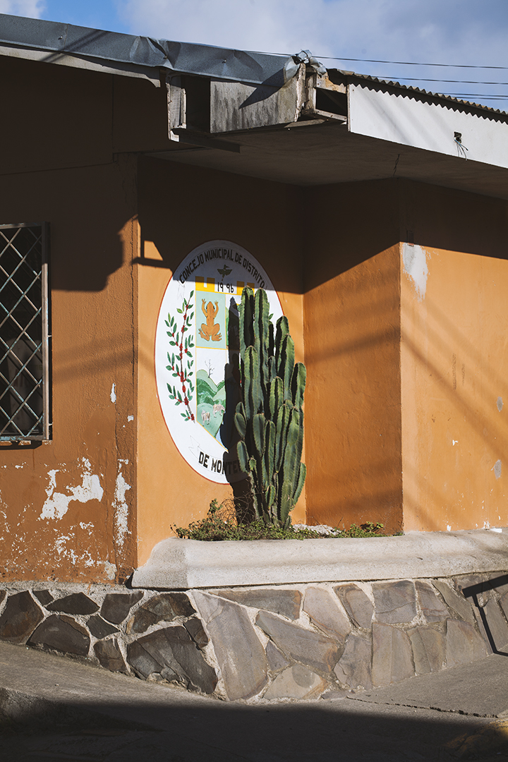 costa-rica-focus-aventure-julia-laffaille-santa-elena-paysage-cactus
