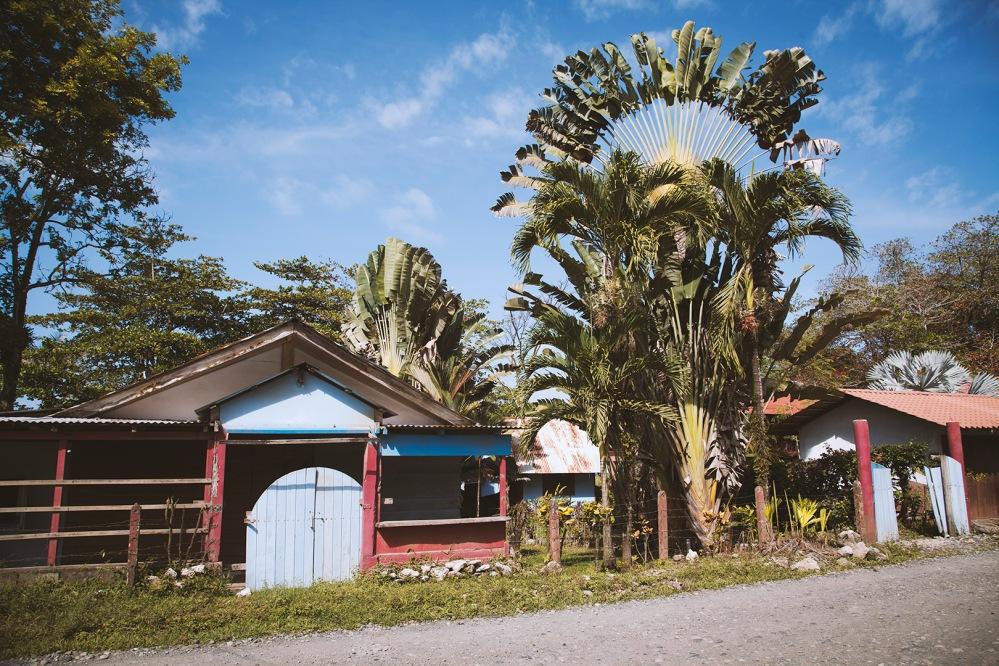 costa-rica-focus-aventure-julia-lt-cahuita-paysage-3