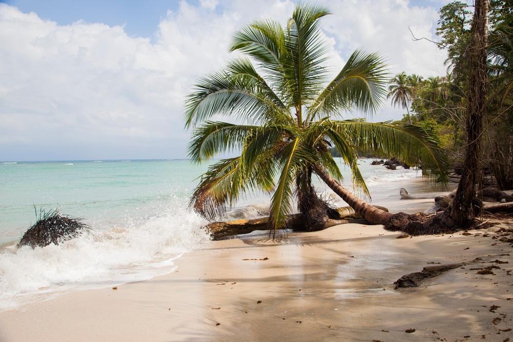 costa rica focus aventure Julia LT cahuita paysage plage