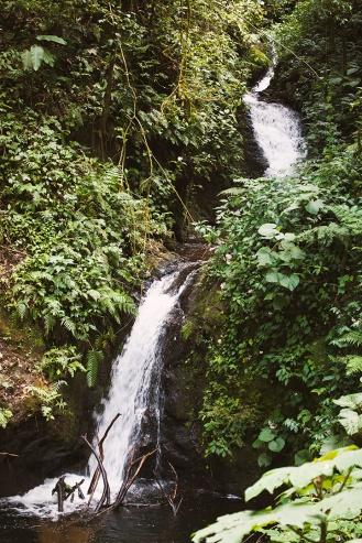 costa-rica-focus-aventure-julia-lt-monteverde-paysage-4
