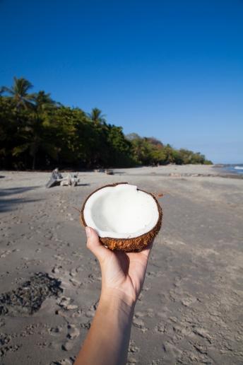costa-rica-focus-aventure-julia-lt-paysage-montezuma-plage-coconut