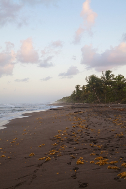 costa-rica-focus-aventure-julia-lt-tortuguero-paysage-plage