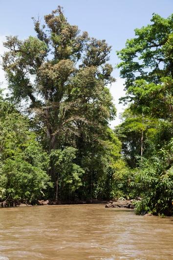costa-rica-focus-aventure-julia-lt-tortuguero-paysage