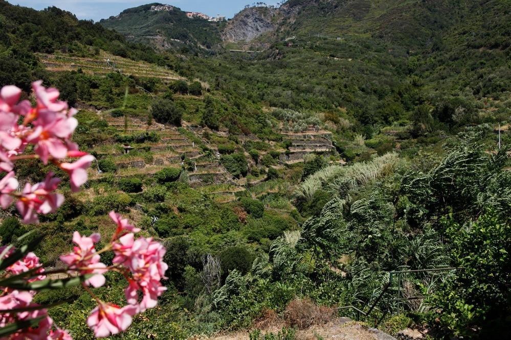 julia-laffaille-focus-aventure-cinque-terre-italie-corniglia-paysage