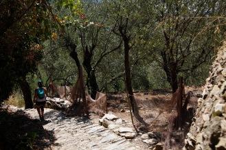 julia-laffaille-focus-aventure-cinque-terre-italie-randonnee-paysage