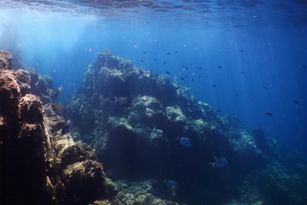 julia-laffaille-focus-aventure-cinque-terre-italie-riomaggiore-snorkeling