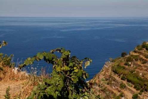 julia-laffaille-focus-aventure-cinque-terre-manarola-italie-paysage