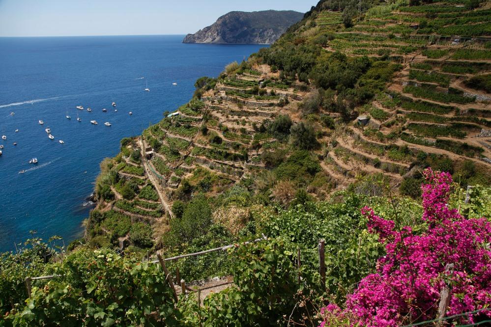 julia-laffaille-focus-aventure-cinque-terre-vernazza-italie-paysage