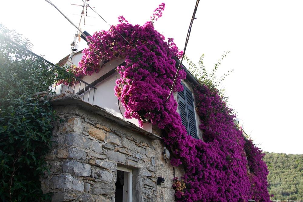 julia-laffaille-focus-aventure-portovenere-italie-paysage