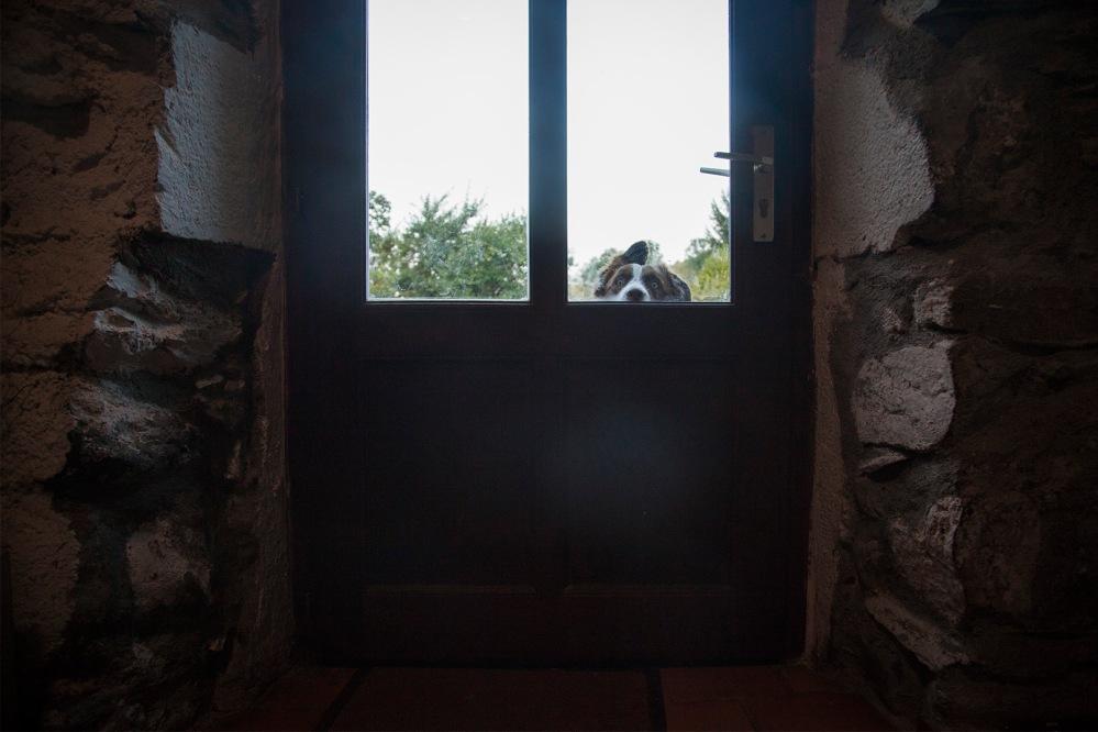 julia-laffaille-reportage-garde-forestier-20