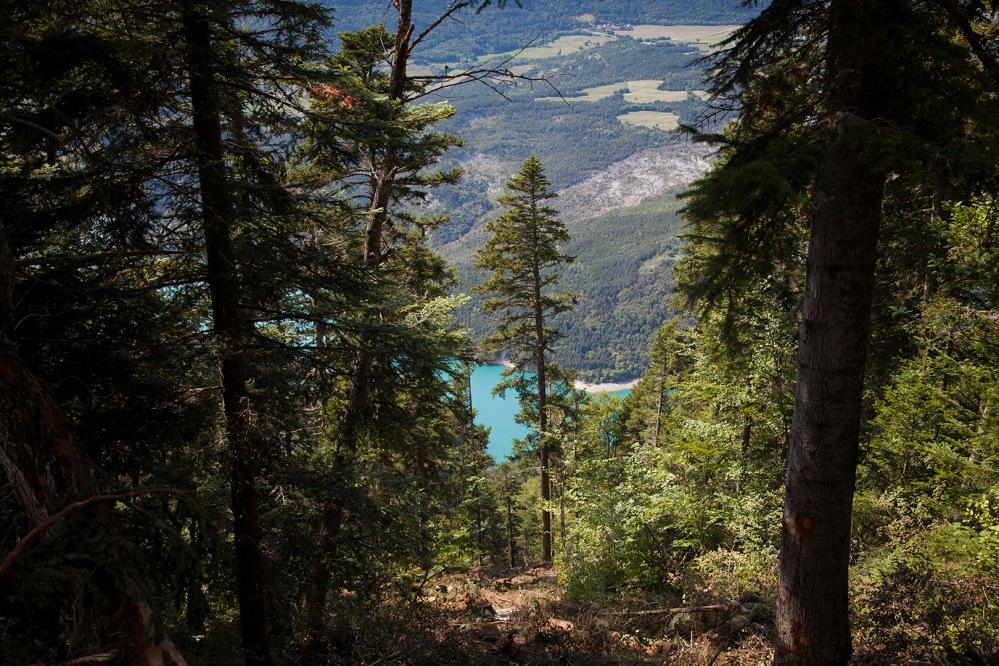 julia-laffaille-reportage-garde-forestier-8