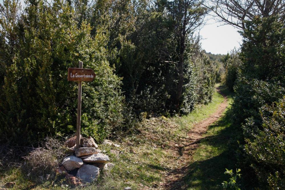 focus-aventure-julia-laffaille-larzac-randonnee-8973
