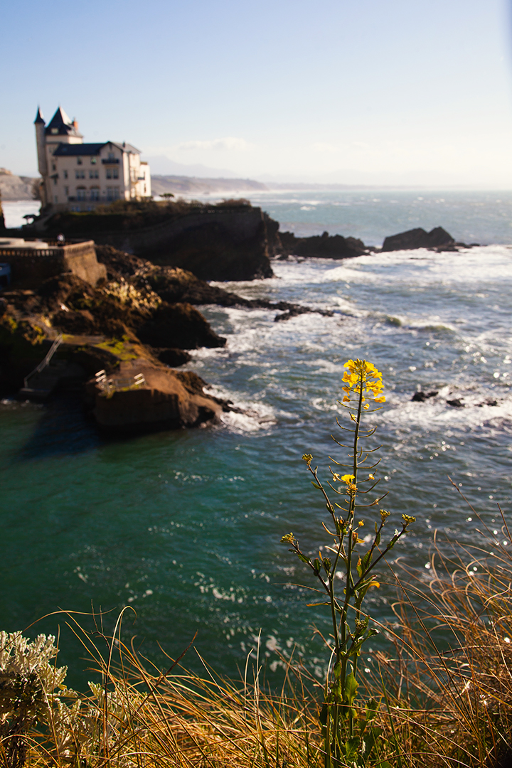 julia_laffaille_focus_aventure_pays_basque-biarritz_villa_belza