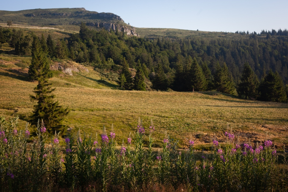 laffaille_julia_focusaventure_GR400_cantal-4581