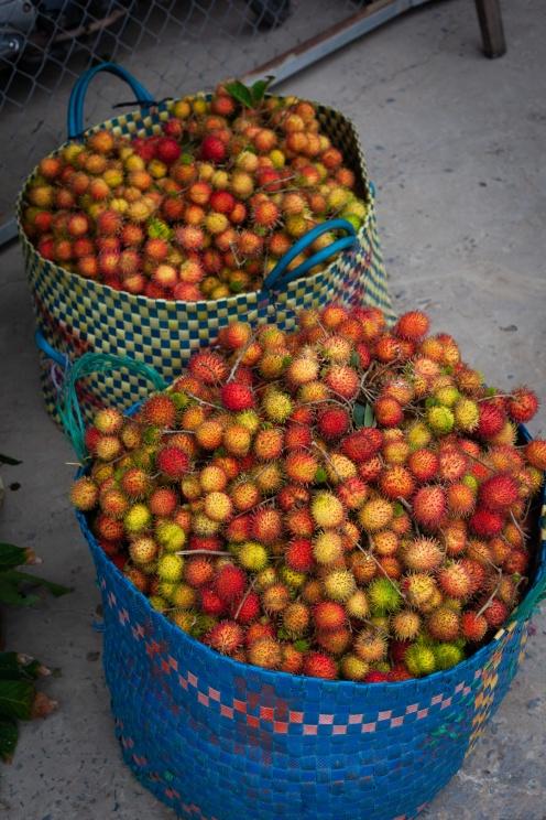 Le ramboutan, fruit star du Vietnam du sud