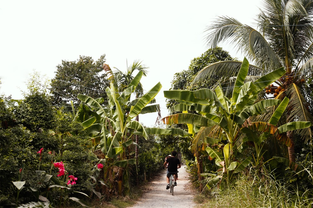 laffaille_julia_focus_aventure_vietnam-9158